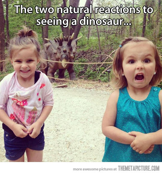 Natural reactions to dinosaur - 4